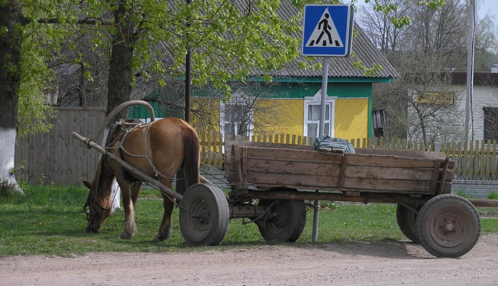 Paard en wagen op het Russische platteland