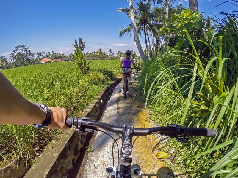 waarom bali fietsen rijstvelden