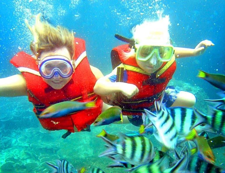 snorkelen menjangan