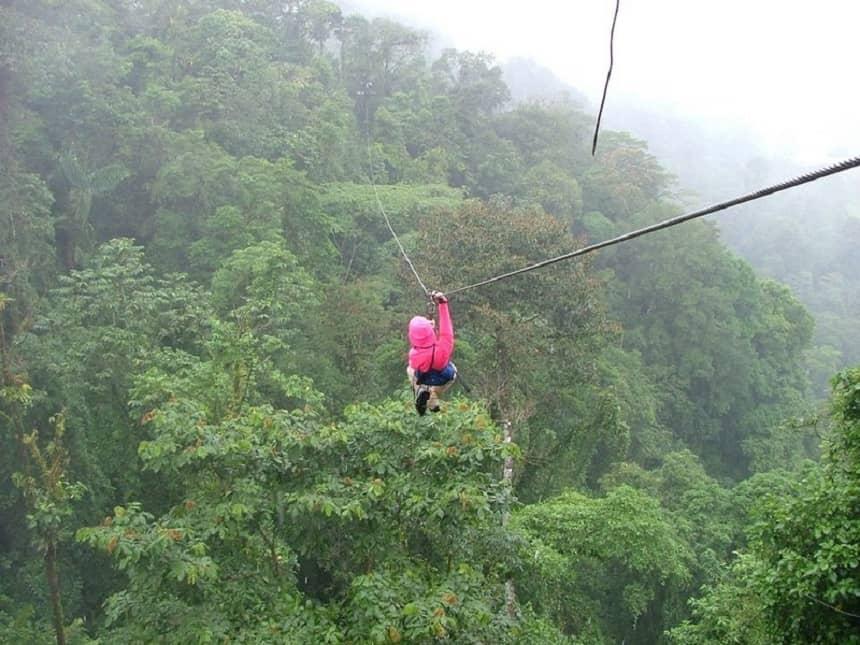 Jungle canopy in Honduras