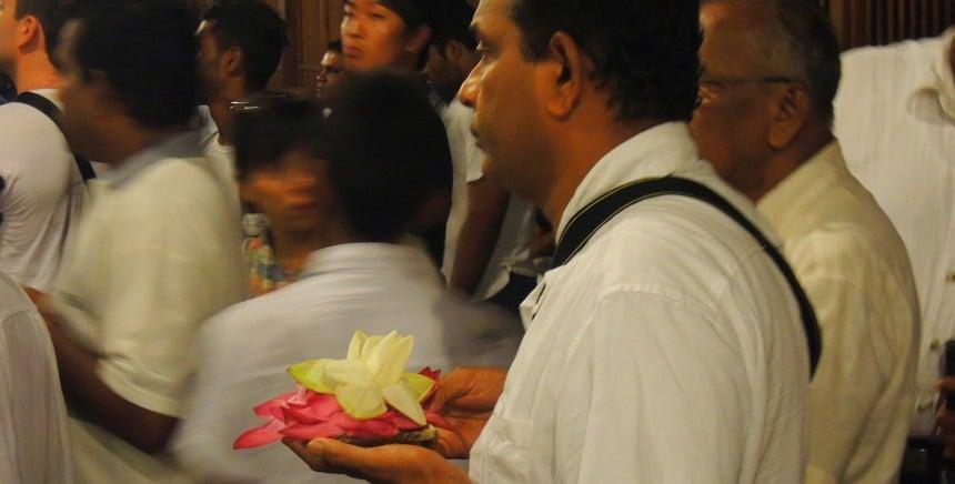 Bloem-offer in de grote tempel in Kandy tijdens de processie van de tand van Boeddha.