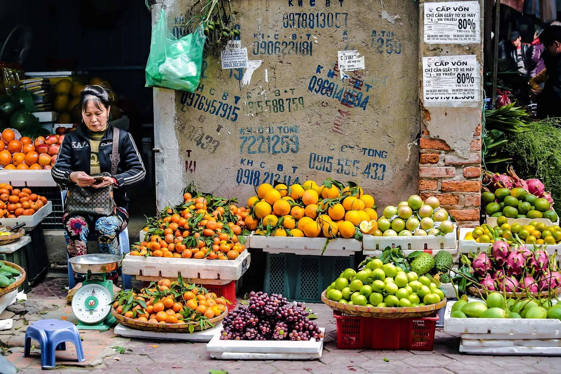 ideale route door een rondreis Vietnam