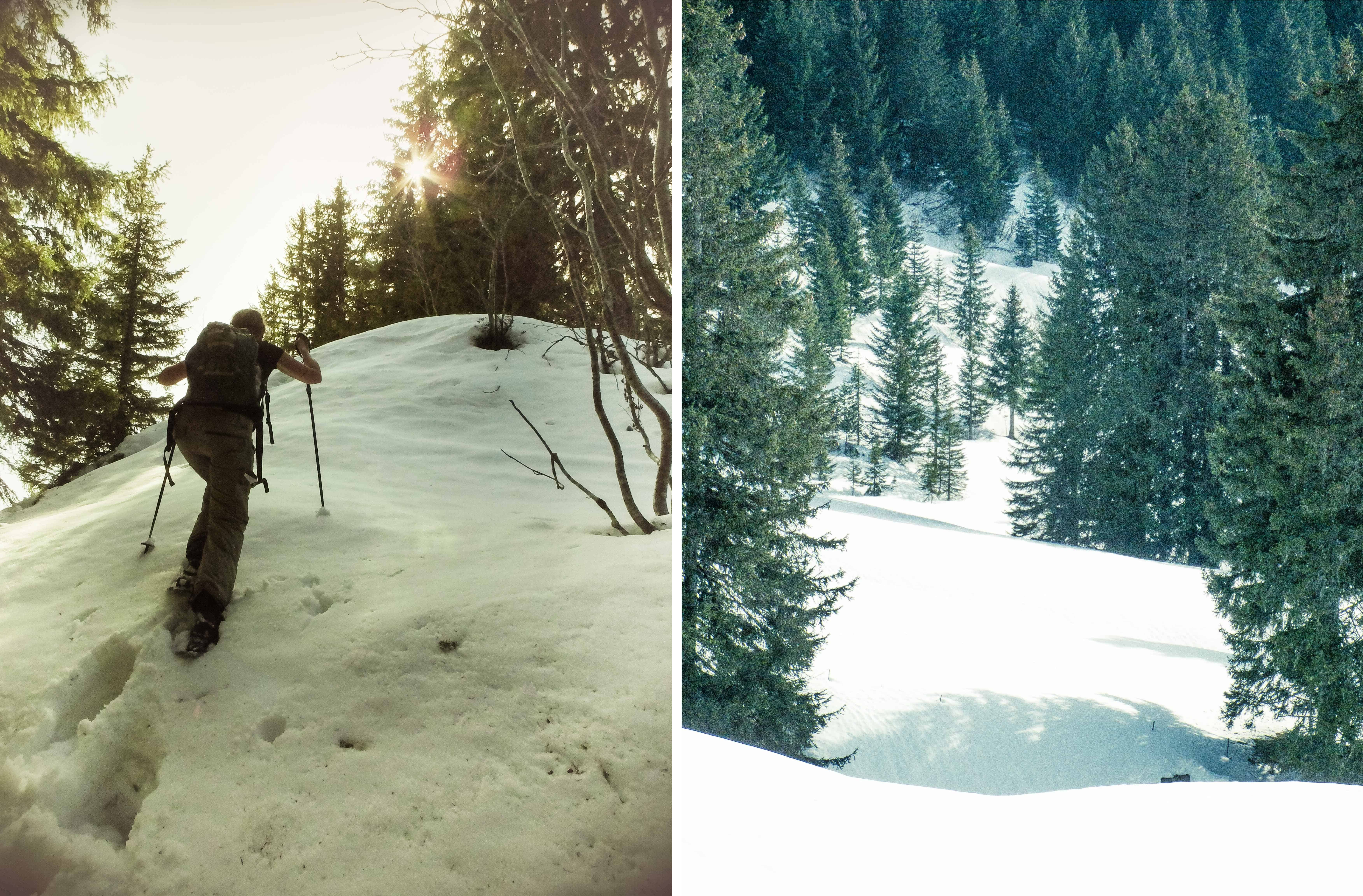 Sneeuwschoenwandeling: ploegen door de sneeuw
