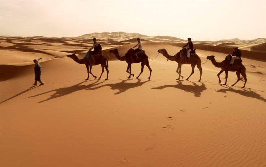 Rit op een kameel in Zagora in de Sahara