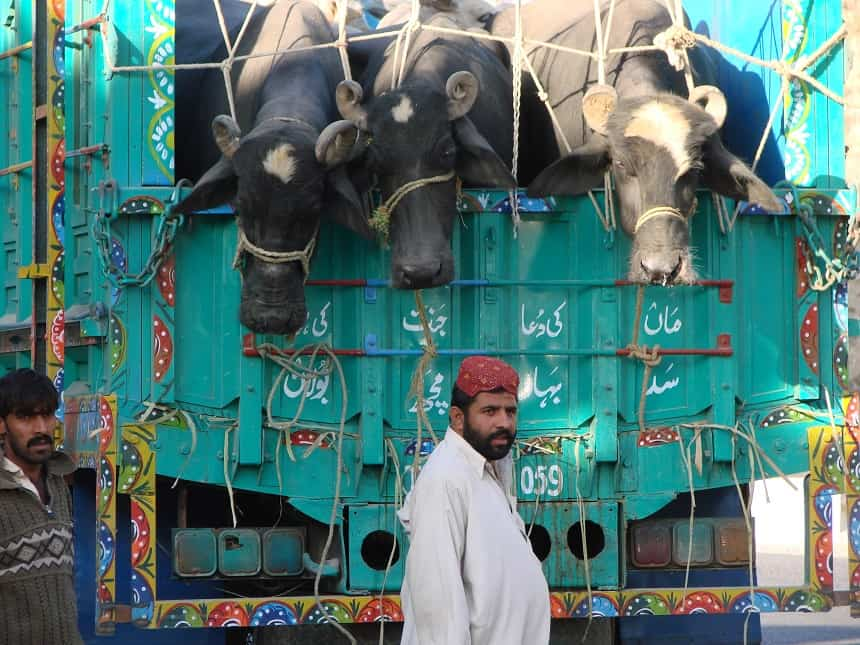 Met een oude Jaguar door Pakistan