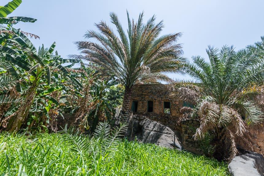 Een kijkje op het platteland van Oman