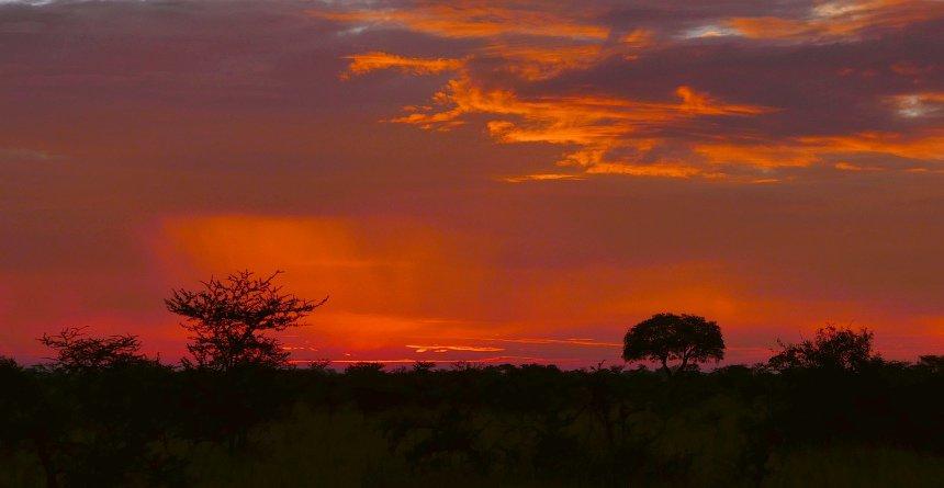 En dan genieten van de mooiste zonsondergang van Afrika!