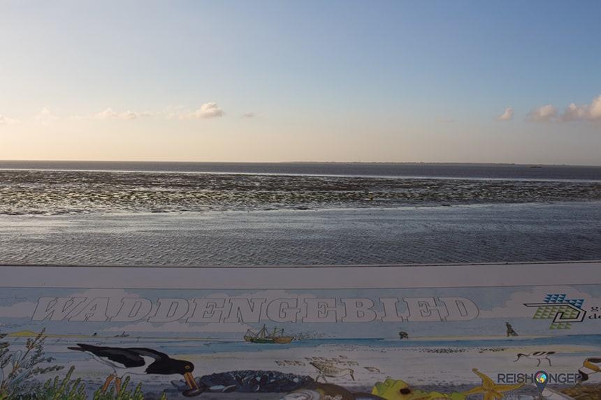 De Waddenzee staat bekend als een uniek natuurgebied