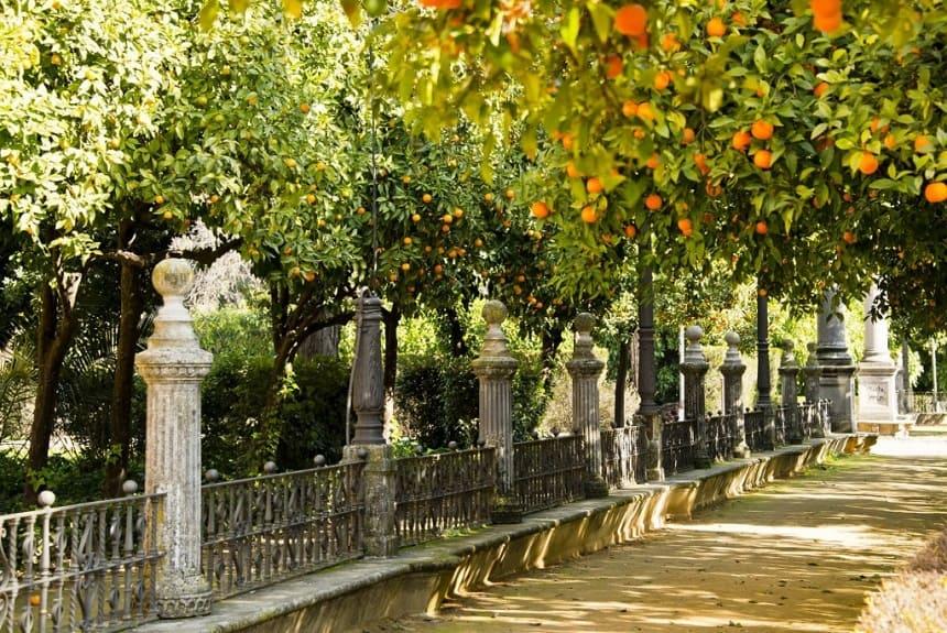 stedentrips in Europa Parque María Luísa