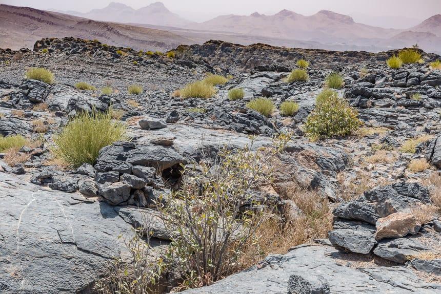 Rotsen, stenen en struiken in de woestijn van Oman