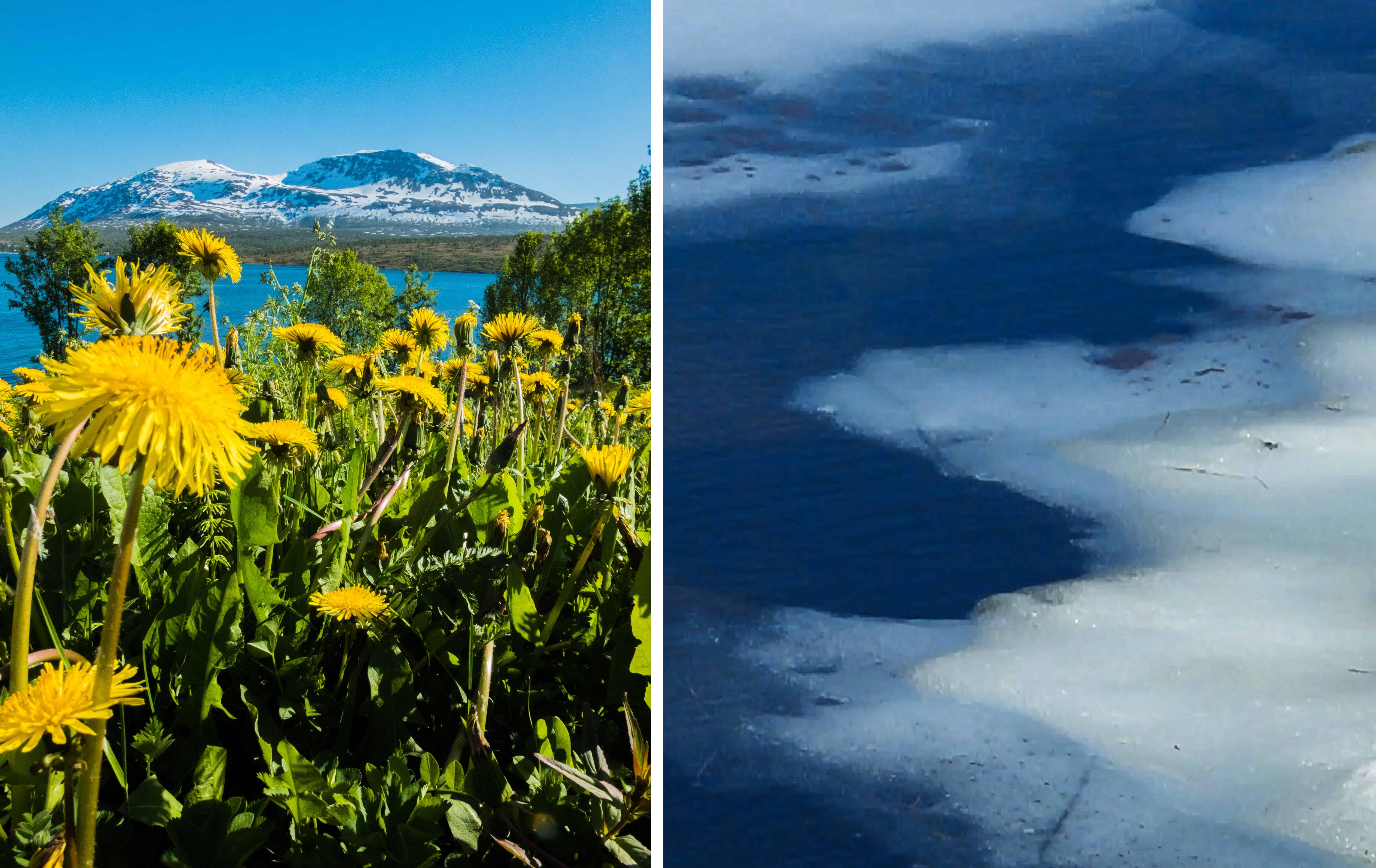 Een landschap met veel contrasten, waar in de ene baai nog ijs op het meer ligt, is de volgende baai al helemaal voorjaarsgroen