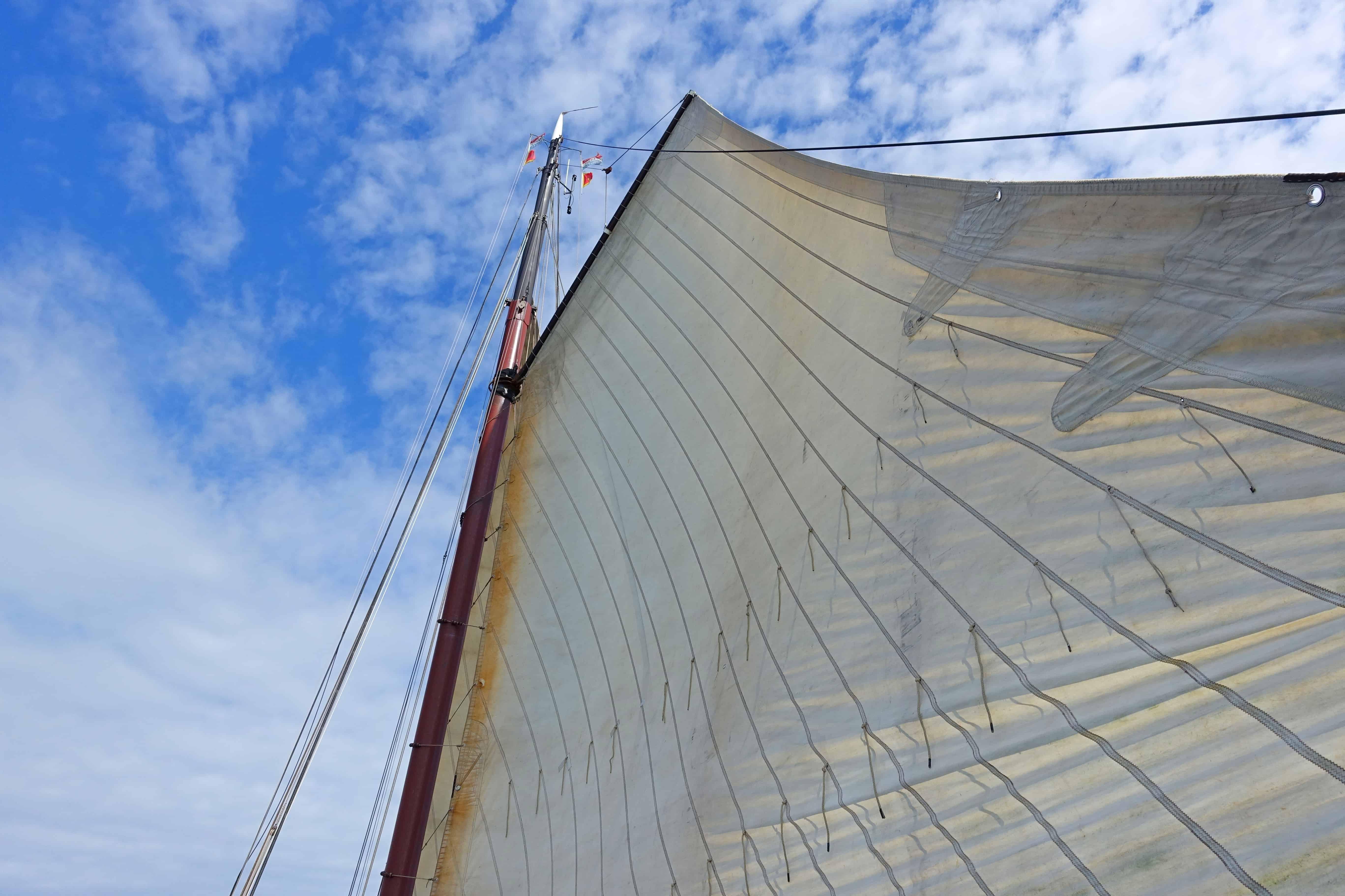De wind in de zeilen van de Larus