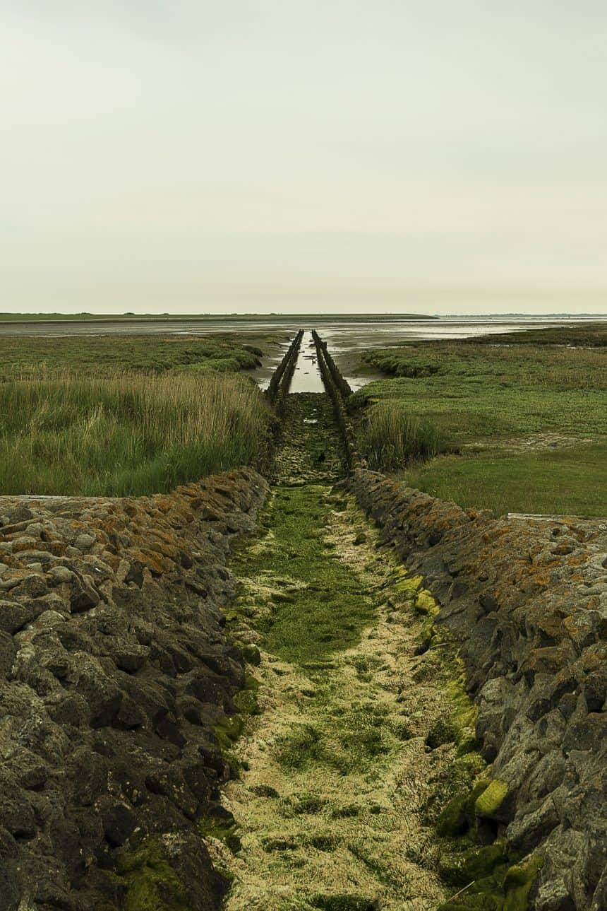 De oostkust van Norderney bestaat uit prachtige natuur