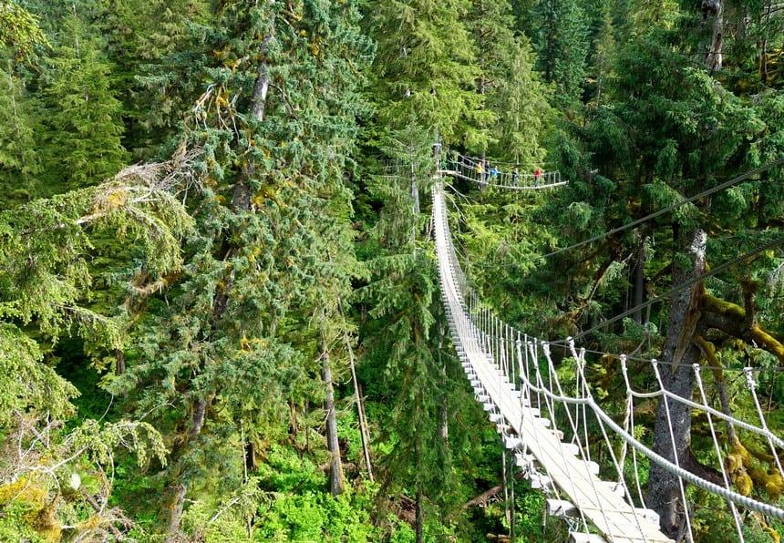 Ketchikan Alaska touwbrug en zipline