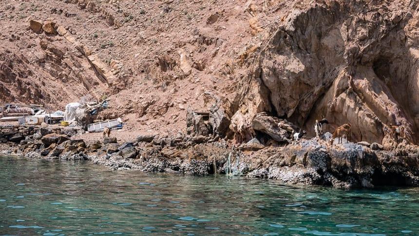 Oman, Musandam