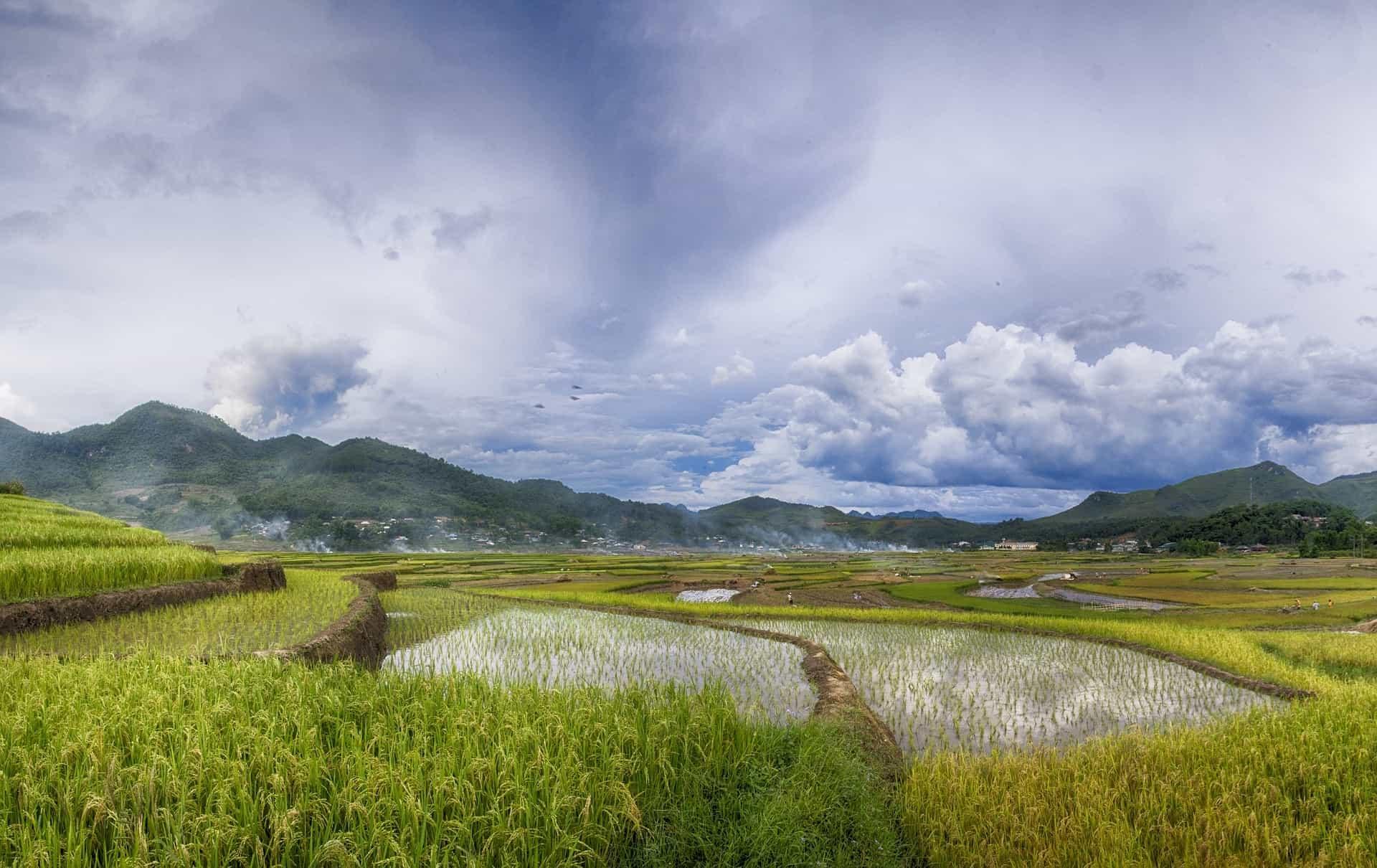 Visum voor Vietnam