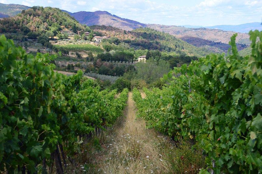 6 tips voor Toscane | wijngaarden Chianti