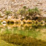 Een fotospecial – Wadi Bani Khalid