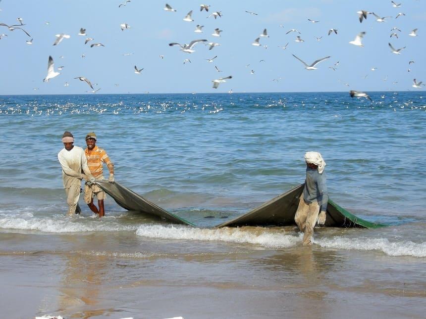 Vissers in Oman