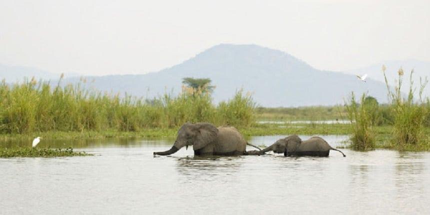 Oost-Malawi