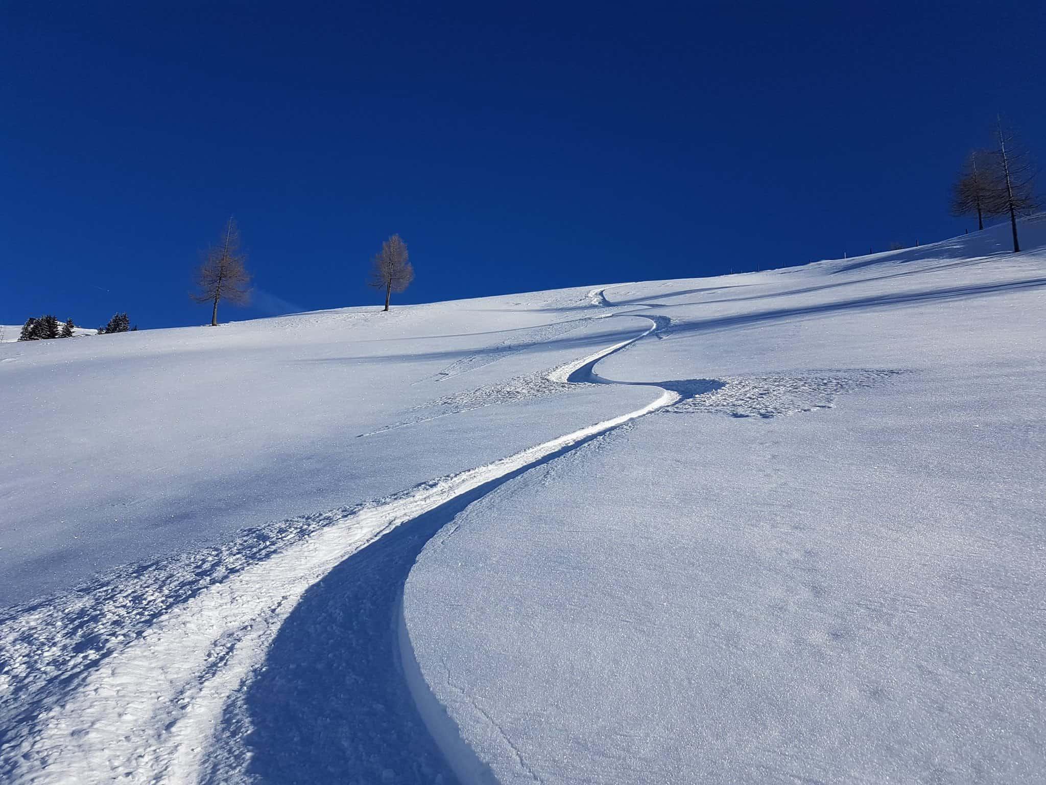 Eerste poederbochten in verse sneeuw