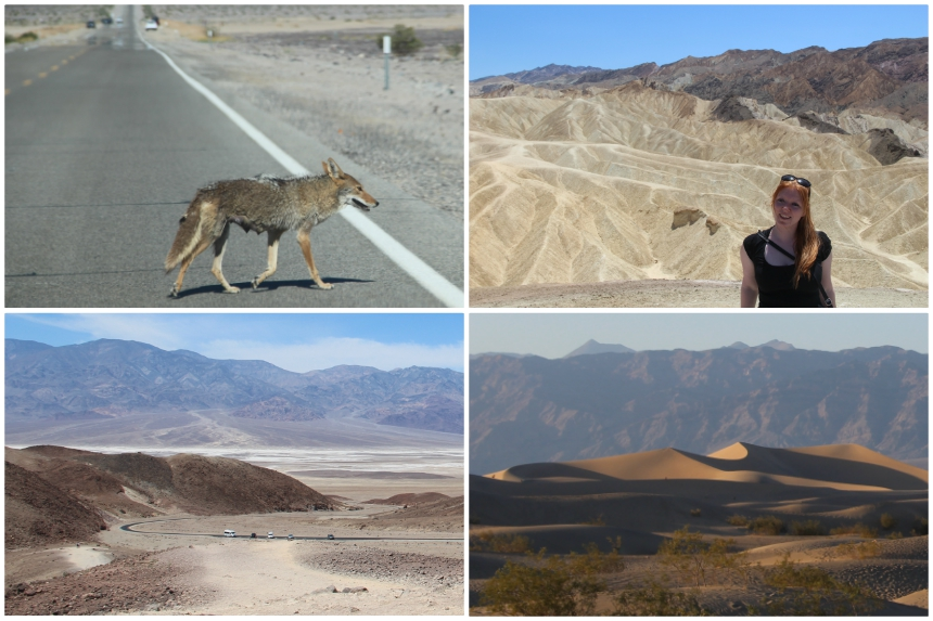 Rondreis Zuidwest-Amerika: Death Valley is verrassend mooi