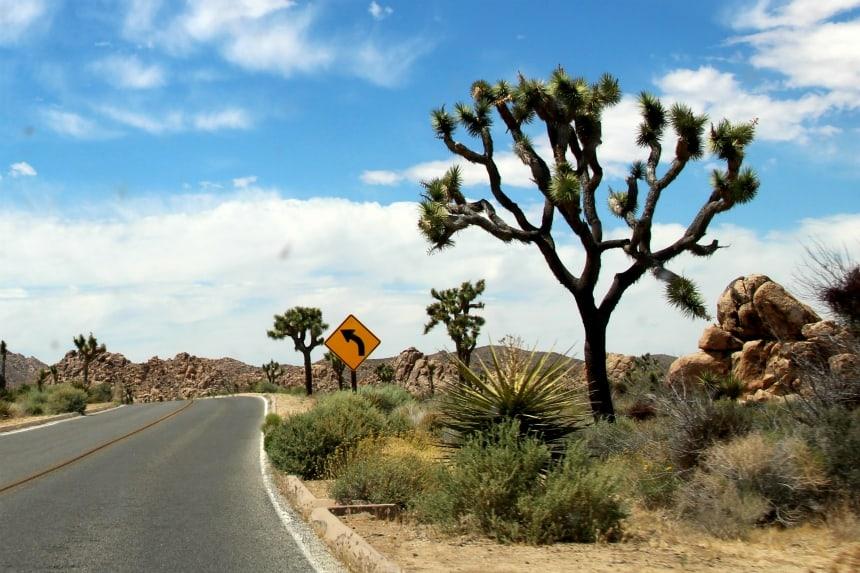 Amerika is de ultieme bestemming voor een roadtrip. Je kunt er uren cruisen.
