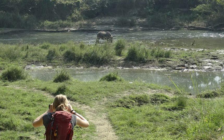 chitwan neushoorn