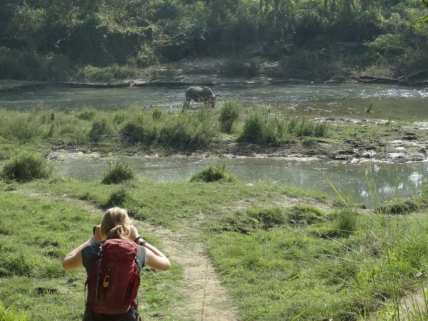 Chitwan jungle en neushoorns