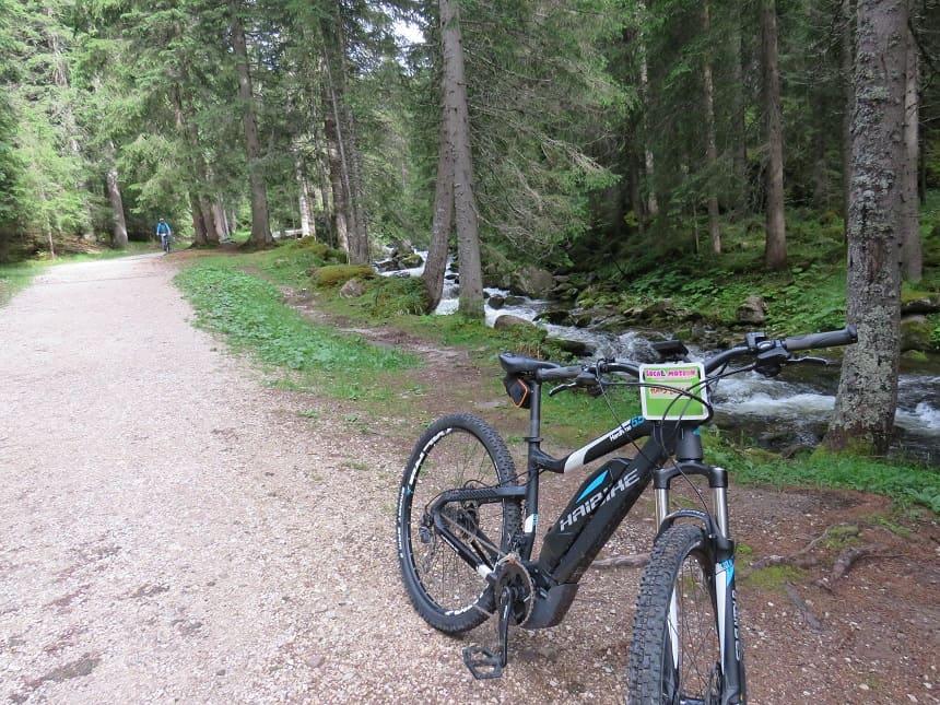 Mountainbiken door Paneveggio Forest