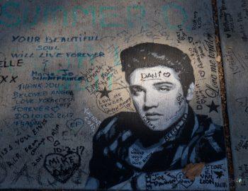 Elvis achterna