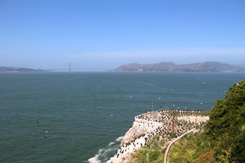 Vanaf Alcatraz kan je in de verte de bekende Golden Gate Bridge zien. Als je geluk hebt tenminste, want in San Francisco is het vaak mistig