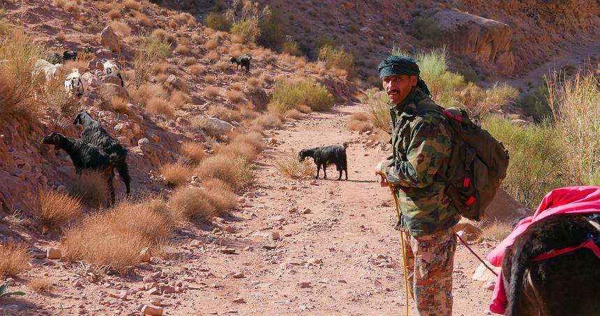 Jordanië, wandelen in Dana. Uit de wind kan de jas op de ezel.