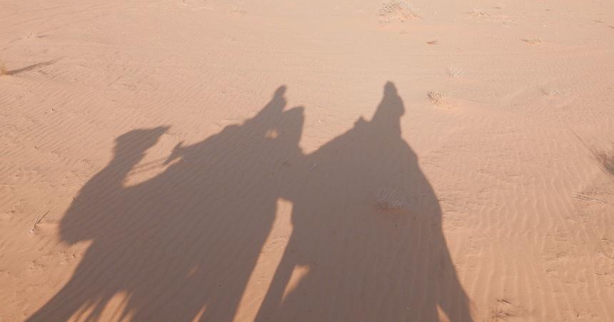 Het schip van de woestijn brengt me bijna in trance.