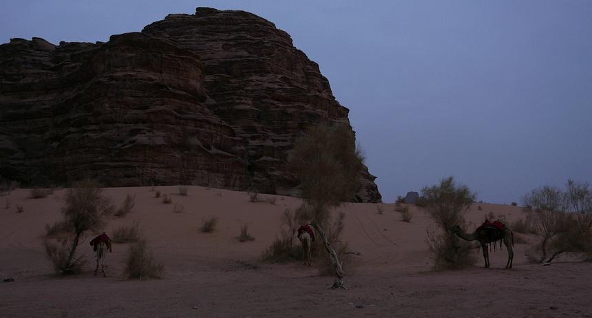 Vanaf 16:00 uur wordt het donker en frisjes. De kamelen staan geparkeerd.