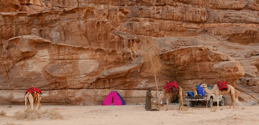 De andere ochtend is Mansour al met de kamelen bezig voordat de zon op komt.