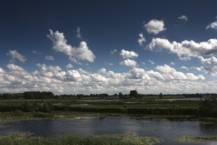 Natuurgebied Botshol