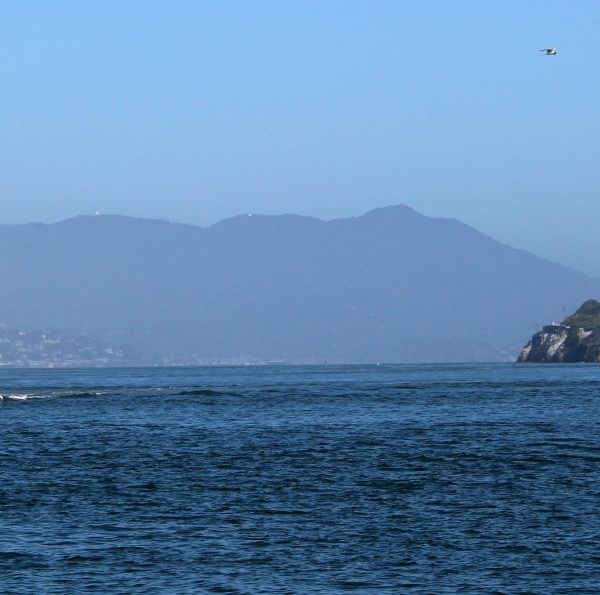 Gevangeniseiland Alcatraz: must-see in San Francisco