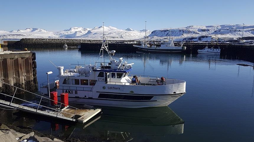 excursieboot whalewatching