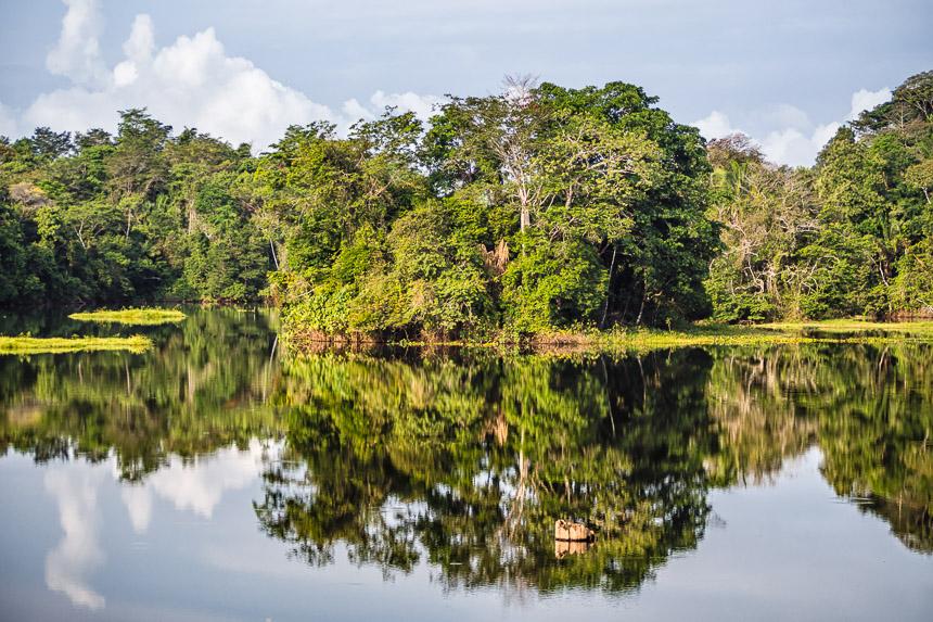 Het Gatunmeer in Panama