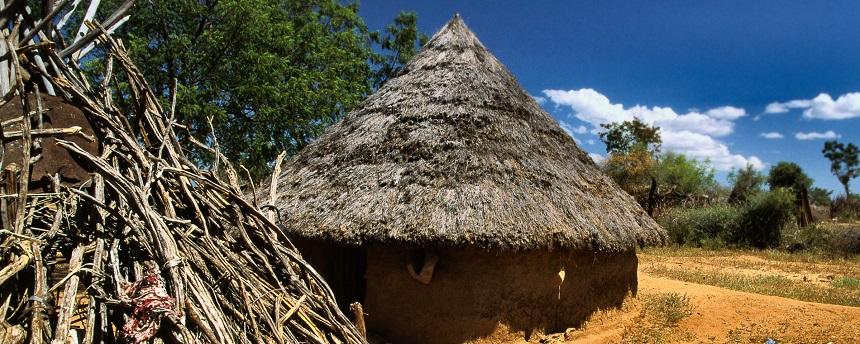 Hamer huts in Turmi