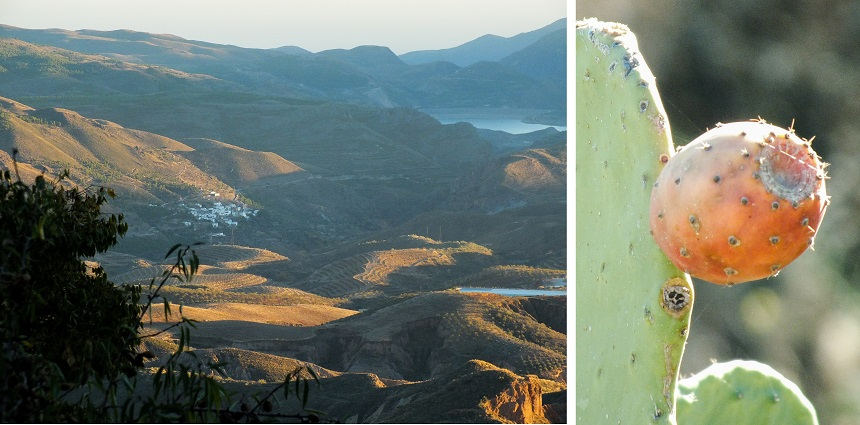 Uitzicht op het gebergte van de Sierra Nevada