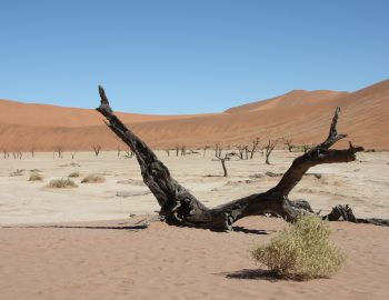 Een rit door het woeste Namibië