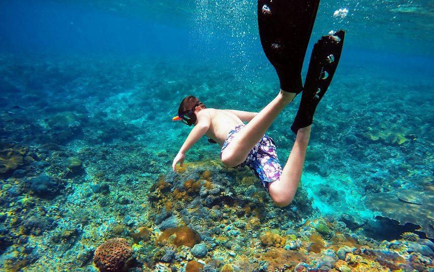 indonesie snorkelen