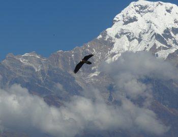 Gouden bergen in Nepal