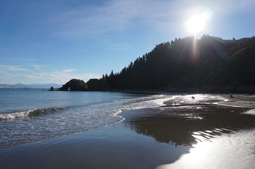 Wakker worden van de ruisende golven op het strand, in Nieuw-Zeeland kan het!