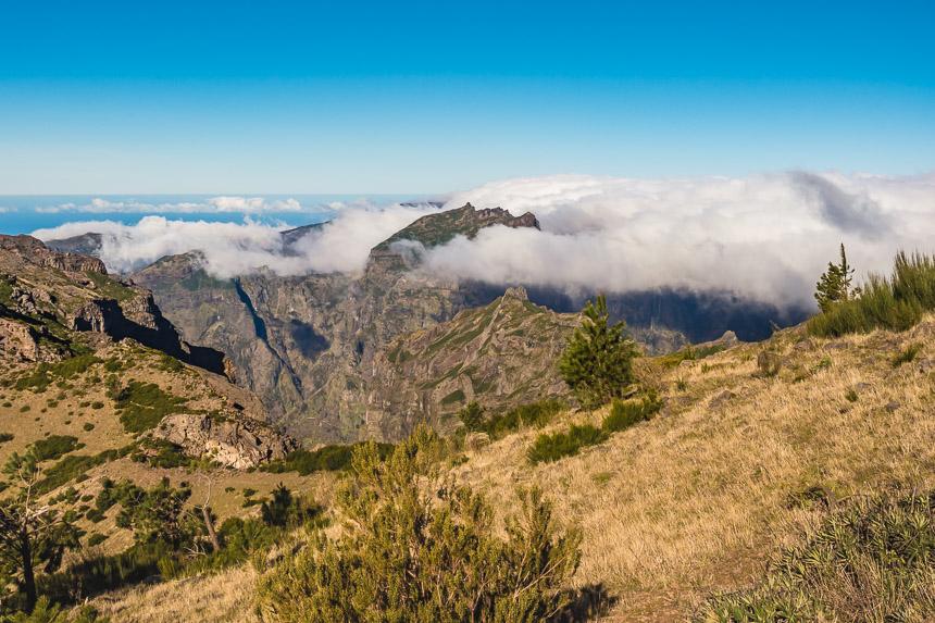 Het ruige Madeira