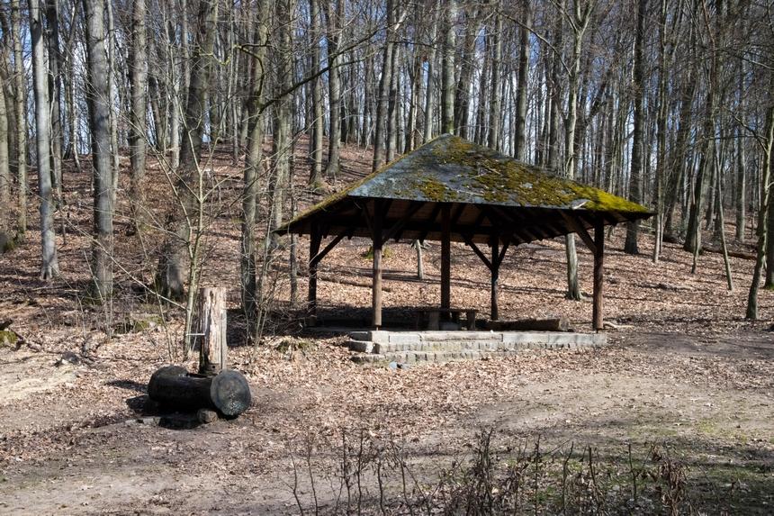 Overdekte picknickplaats in het Aaper Wald