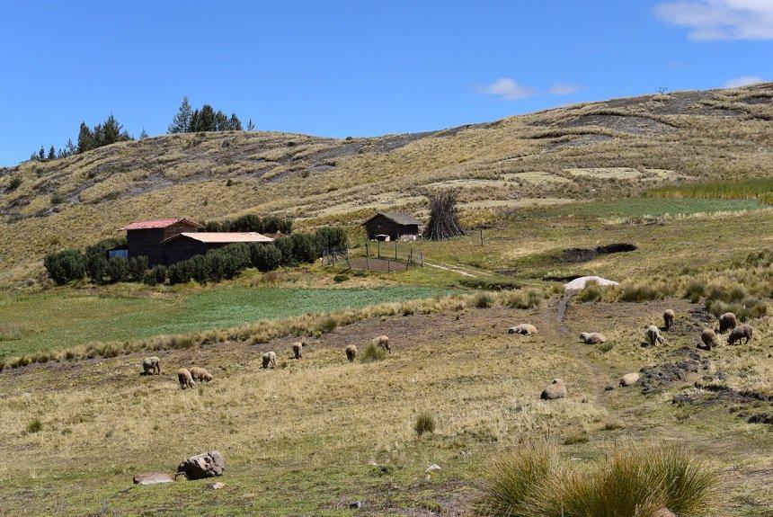 Omgeving Cajamarca Peru