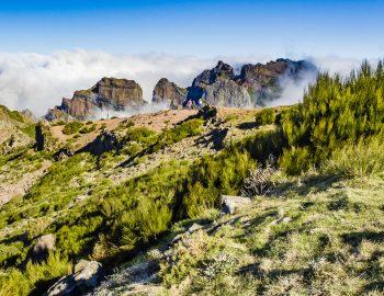 Gezichten van Madeira